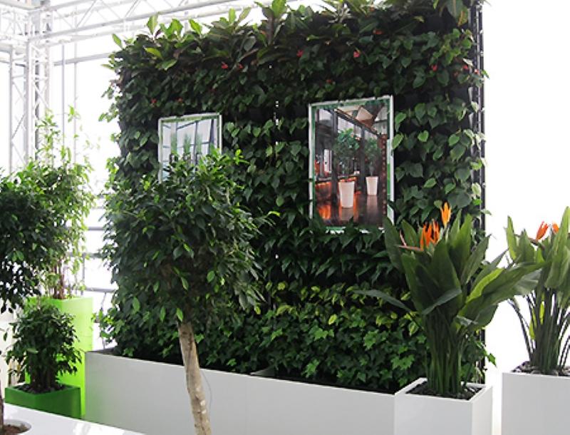 Pflanzenwände Wiesbaden