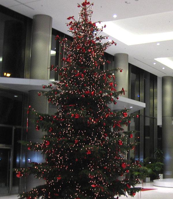 Weihnachtsdeko 2019.Weihnachtsdeko Und Adventsservice Büropflanzen Hydrokultur
